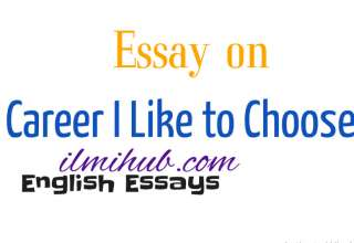 Essay on Career, Career I Like to Choose Essay, Essay on Profession I Like to Choose