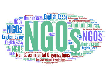 essay on NGOs, essay on Non Governmental Organizations, Essay on role of NGOs