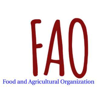 FAO MCQs, MCQs about FAO, Solved MCQs about FAO