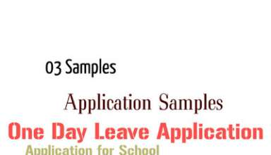 One Day Leave Application For School, One Day Leave Application for Students, One Day Leave Application for Urgent Piece of work