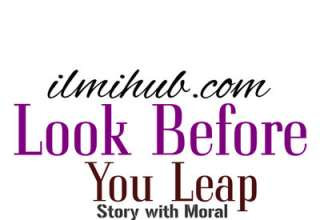 Look before you leap story for Class 11, Look Before you Leap Story for 1st Year, All Covet All Lose Story