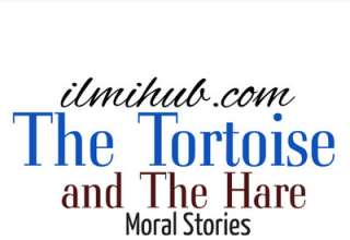 The Tortoise and The Hare Moral, The Tortoise and The Hare Story, The Tortoise and The Hare for 1st year