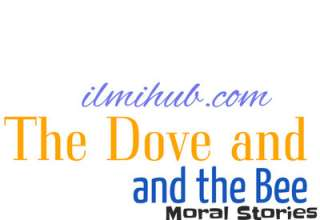 Dove and the Bee Story in English, The Dove and the Bee Story for FSC, The Dove and the Bee Story
