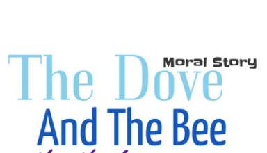 Dove and Bee Story for Fsc, honey bee story in english, The been and the Dove story, The Dove and the Bee Story