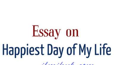 The Happiest Moment In My Life Essay, essay on happiest day of my life, happiest day of my life essay,