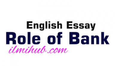 Essay on Role of Bank, Role of Bank Essay with Outline, Essay for Bcom