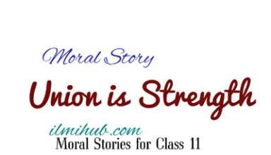 union is strength story, union is strength in English, Union is strength Moral story for fsc