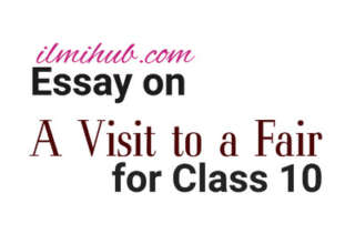 A Visit to a fair Essay, Essay on A Visit to a fair for Class 10, A Visit to a fair Essay for 10th Class