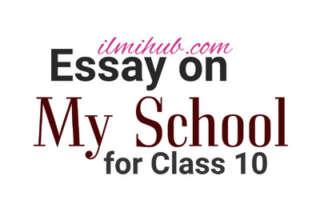 Essay on My School in English, My School Essay for Class 10, Essay on My School for 10th Class