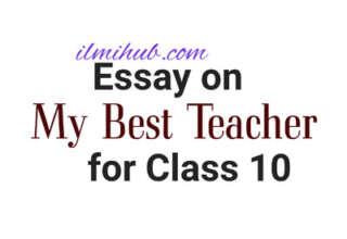Essay on My Best Teacher for Class 10, My Best Teacher Essay for 10th Class, My Favourite Teacher Essay for Class 10