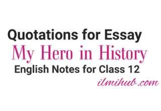 My Hero in History Essay Quotations, My Hero in History Quotes, Quotes for My Hero in History Essay