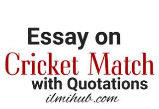 Essay on a Cricket Match with Quotations, Cricket Match Essay with Quotations, Quotes on Cricket match