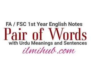 pair of words with urdu meanings, pair of words, pair of words with urdu meanings and sentences